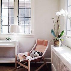 Bludot - Toro Lounge Chair - $1299