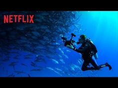 "Mission Blue - Official Trailer - Exclusively on Netflix Aug 15 In 2009, ""The Cove"" film's producer, Fisher Stevens, is back, taking the director's chair along with Robert Nixon (director of ""Gorillas in the Mist""), and his scope has widened considerably. ""Mission Blue"" (available August 15 through Netflix) aims to open our eyes to the startling impact that we all have on life in the ocean."