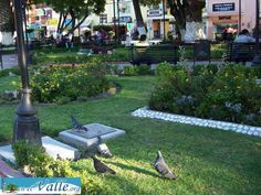 http://www.enelvalle.org/municipios/20-tula/34-las-flores-del-jardin-de-tula