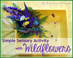 Simple Sensory Activity with Wildflowers from My Nearest and Dearest Sensory Activities Toddlers, Creative Activities For Kids, Activities For Adults, Baby Sensory, Sensory Bins, Infant Activities, Kindergarten Activities, Creative Kids, Fun Activities