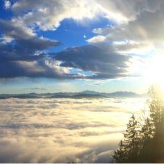 Guten Morgen Adliswil 🚡 #Felsenegg #Luftseilbahn #lebeninadliswil #laf #sonnenaufgang #nebelmeer #Sonne #sun #zuerich #kantonzuerich… Heavenly Places, Landscapes, Clouds, Earth, Outdoor, Instagram, Sunrise, Good Morning, Round Round