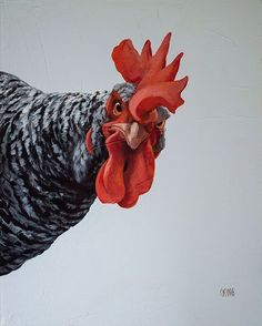 ArtPropelled — Loretta by Caryn King Rooster Painting, Rooster Art, Chicken Painting, Chicken Art, Chicken Drawing, Arte Do Galo, Farm Animals, Cute Animals, Chicken Pictures