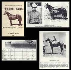 Three Bars was very influential on the Quarter Horse.