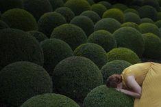 Galerie Esther Woerdehoff: Maia Flore - au lieu de ce monde .... Coming soon
