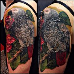 5eeae43461ef3 #parrotsofinstagram #parrots #tattoo #greyparrot J Tattoo, Blue Tattoo,  Cover Up