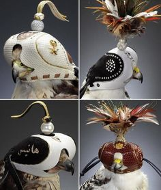 Possibly the most expensive Hoods in the World.... - Falconry Forum (IFF)