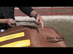 Equi-Tape™ || Equine Elastic Kinesiology Athletic Tape.  (Designed for high-performance equine athletes.)