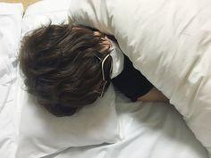 Have a sleeping luz found in Soraru's twitter.