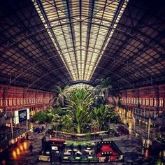 Tropical palm trees reach toward the steel and glass roof of #Madrid's Atocha Station for beautified #train travel. Photo courtesy of jnasa on Instagram.