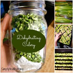 Dehydrating Celery Simply Healthy Home >> Bet celery smells good as it dehydrates. Dehydrated Vegetables, Dried Vegetables, Dehydrated Food, Fruits And Veggies, Canning Tips, Canning Recipes, Canning Food Preservation, Preserving Food, Celery Recipes