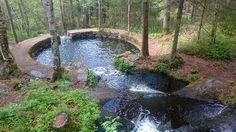 Piscina natural en el bosque