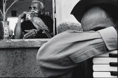 Photo: Tiago Santana - Ceará -- Brazil.