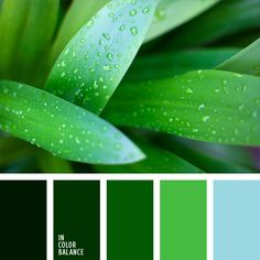 Color palette ocean blue save 15 on 1stoplighting with coupon for inspiration art and design color match was made by nature all color fandeluxe Images