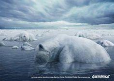 Greenpeace: Polar Bears by Memac Ogilvy & Mather Animals in Print Ads Global Warming Poster, Save The Arctic, Ogilvy Mather, Street Marketing, Best Ads, Creative Advertising, Advertising Space, Print Ads, Barack Obama