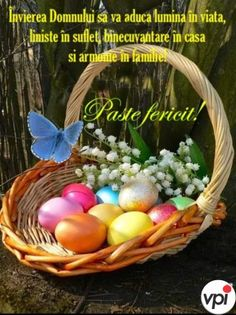 Beautiful Beaches, Happy Easter, Eggs, Breakfast, Amin, Food, Pictures, Easter Activities, Happy Easter Day