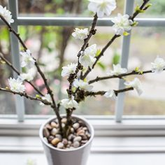 Make these gorgeous spring inspired branches for your home decor, to dress a party table or for your handcrafted wedding reception.