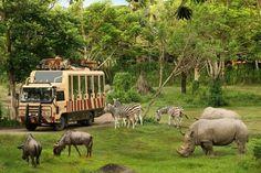 Bali Safari & Marine Park, Gianyar: See 2,761 reviews, articles, and 2,031 photos of Bali Safari & Marine Park, ranked No.4 on TripAdvisor among 62 attractions in Gianyar.