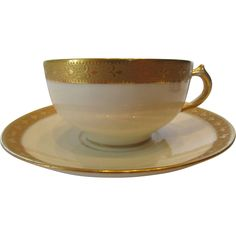 Limoges Charles Haviland Porcelain Tea or Coffee Cup and Saucer c 1915