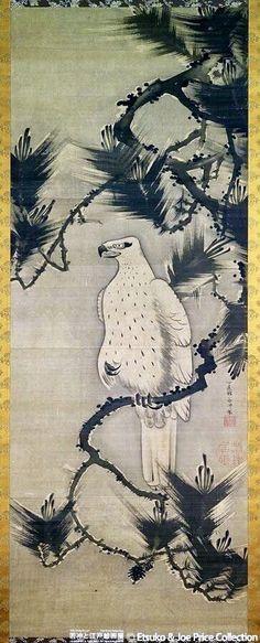 Hawk in Pine Tree. 伊藤若冲 Itō Jakuchū. Japanese hanging scroll. Eighteenth century. Etsuko and Joe Price Collection. 「松鷹図」は、松の枝に止まった一羽の鷹を描いたもの。鷹は、背景の部分を墨で薄く塗ることで、白く浮かび上がらせるようにしている。一方、羽や腹の部分は、細い線や点でアクセントをつけており、若冲のほかの動物たちとは、かなり違った印象を与える。