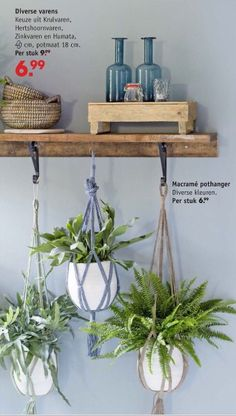 DIY Ideas - Hanging Garden Nice, love this! by Intratuin. Plant Decor, Indoor Plants, Sweet Home, Shelves, House Design, Patio, Interior Design, Flowers, Room