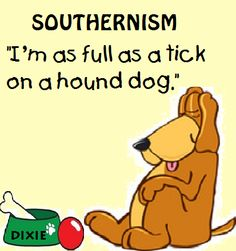 This is soooo funny because it is my northern friend who says this all the time, well she leaves off hound dog part.