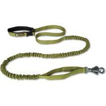 Ruff Wear Roamer Leash. It's elastic so it absorbs the shock when Rooney pulls, it has a one-hand clip and it hooks around your waist so it's hands-free.