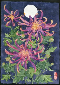 chrysanthemums In my mothers garden 2 by gabby malpas