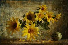 Still life photography wonderful style by Svetlana Pa  :):)