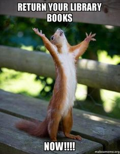 Image result for return library books