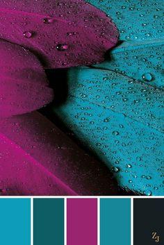 Dark Teal Burgundy Black Palette Colors Design And Illustration