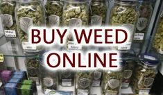 Thinking about buying marijuana online?, get the best Quality marijuana strains at buy legal hemp, buy marijuana online , buy weed online , Cannabis Vape, Buy Cannabis Online, Buy Weed Online, Medical Cannabis, Purple Cookies, Weed Strains, Weed Seeds, Marijuana Plants, Blue Dream