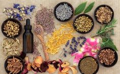 Bring balance & health to your Mind, Body, and Soul with Ayurveda Ayurvedic Medicine, Natural Medicine, Herbal Medicine, Natural Health Remedies, Natural Cures, Herbal Remedies, Ayurveda, Autogenic Training, C'est Bon