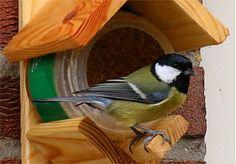 Eine Alternative zum Meisenknödel - ein Mini-Vogelhaus, darin ein kleiner Topf mit Fett-Körner-Gemisch.
