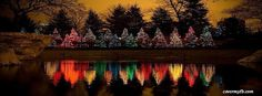 HAPPY HOLIDAYS EVERYONE!!!!  Christmas Tree Lights Reflections