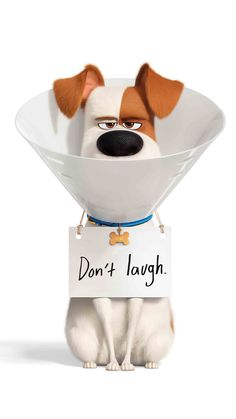 Secret Life of Pets Movie Wallpapers, Cute Cartoon Wallpapers, Disney Phone Wallpaper, Iphone Wallpaper, Pet Max, Photo Images, Secret Life Of Pets, Disney And More, Belle Photo