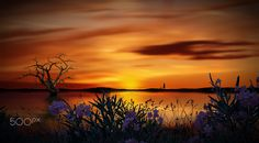 promenade by costelbcc Fine Art, Celestial, Sunset, Outdoor, Photography, Sunsets, Outdoors, Outdoor Living, Garden