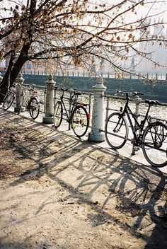 Bicycling #bicycles, #bicycle, #pinsland, https://apps.facebook.com/yangutu