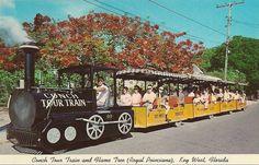 Postcard Conch Tours Train Hame Tree Royal Poinciana Key West Florida FL