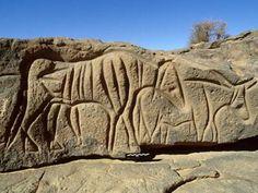 Engraving of a Bubalus Antiquus on cliff at Tiksatin, near Mathendous, Libya