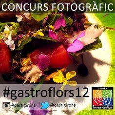 """Concurs fotogràfic #gastrflors12"""" amb Instagram"""