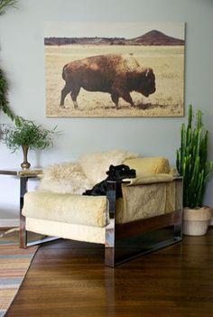 Dallas, TX: Bri and Trey Denton - eclectic - living room - dallas - Hilary Walker