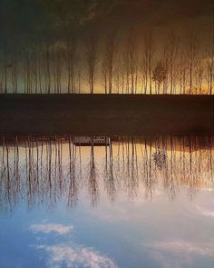 P H O T O    @samfiore72  L O C A T I O N   Nella campagna piemontese... S E L E C T E D   @giuliano_abate & @emil_io F E A U T U R E D  T A G   #ig_piemonte #piemonte #insta_international #natgeotravel  #citybestpics #globe_travel_ #luxuryworldtraveler #worldtravelpics #instaitalia #awesomeearth #italy_vacations #wonderful_places #beautifuldestinations #bestvacations #worldplaces #beautifulplanett #nakedplanet #garden  #remarkableplaces #visitpics #earthpix #discoverearth #hiptour by…