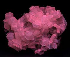 Minerals, Crystals & Fossils - Aragonite - Giumentaro Mine, Enna, Sicily, Italy ...