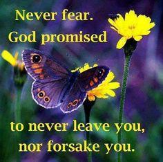 HEBREWS 13:5   Psalms and Proverbs   Pinterest