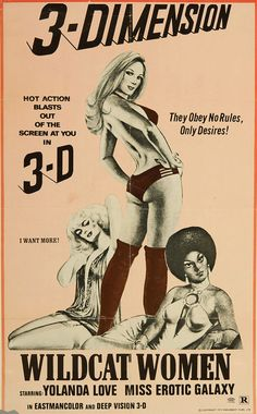 sexploitation movie poster (7)