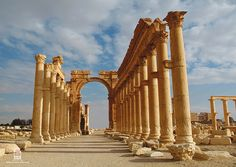 Roman ruins of Palmyra - near Damascus, Syria