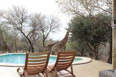 Tip: Vakantiehuis in Zuid-Afrika