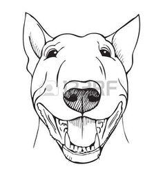 Stock vector of 'Bull terrier, bull terrier funny face, black and white vector. - Stock vector of 'Bull terrier, bull terrier funny face, black and white vector… - Staffy Bull Terrier, Mini Bull Terrier, Perro Fox Terrier, Perros Bull Terrier, Bull Terrier Funny, English Bull Terriers, Staffordshire Bull Terrier, Chihuahua Terrier, Teacup Chihuahua