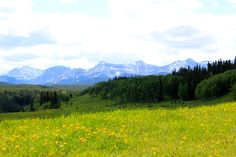 """The Hills are alive with the Sound of Music""....... no just kidding. Near Calgary Alberta"