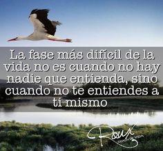 #RouxBalboa #coaching #reflexion #sonriealavida #lafrasedehoy #lafrasedeldia